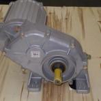 GEAR MOTOR-STD-50:1-W/TP